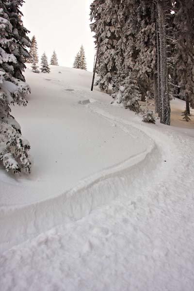 Sledovi v deviškem snegu